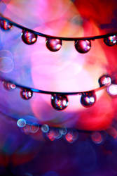 City Lights by xLindarielx