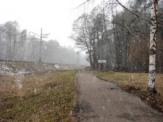 Jurmala (last snow) by radiolov