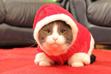 Christmas Merlin by Artistic-Dodger