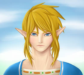 Link Portrait by Masae