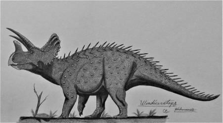 Wendiceratops pinhornensis by AcroSauroTaurus