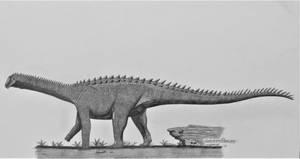 Adamantisaurus mezzalirai by AcroSauroTaurus