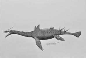 Cryptocleidus by AcroSauroTaurus