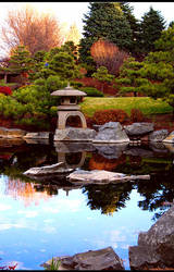 Japanese Pond by P0LKA-D0T