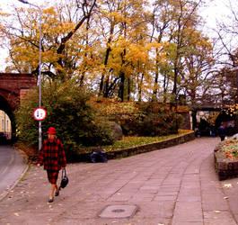 Autumn walk by Karaluch