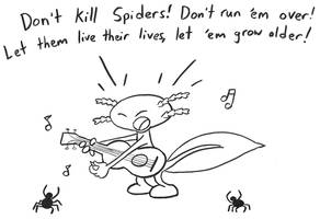 Don't Kill Spiders by joffeorama