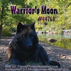 Wolf Play Avatar #4.0 by PickeBicke