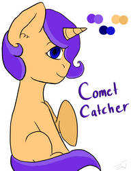 Comet Catcher by ShadowThorn2000
