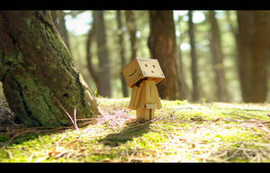 Danbo's Woodland Wander by RyanMichael