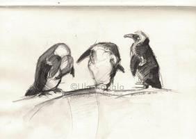 Sketchbook 4 by ukapala