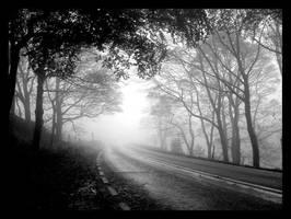 Road by KingOfGonzo