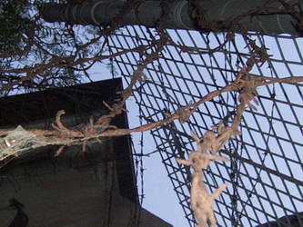 Barbed Wire by serp-stock