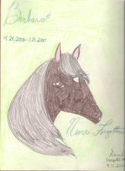 Barbaro: Never Forgotten by rosepetal179