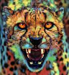 Big Cat ~ Cheetah Colorful by AStoKo