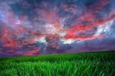 Red sky field WALLPAPER by AStoKo