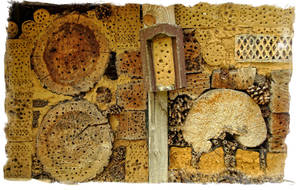 Houses for insects ~ ideas 3 by AStoKo