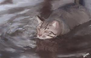 Water Kitty by yinmorii