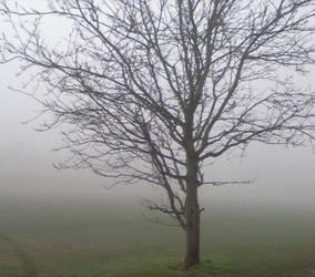 Mist by tye104