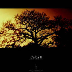 Ceiba II by yager12