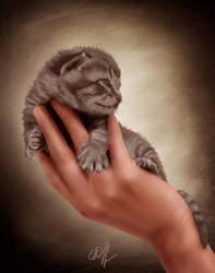 El gatito by ElenaDudina