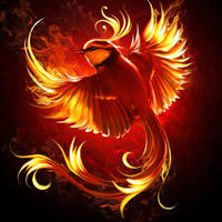 Fire bird by ElenaDudina