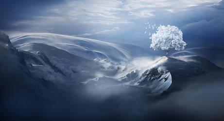 Snow tree by ElenaDudina