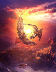 Hawks dance by ElenaDudina