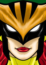Hawkgirl by Thuddleston