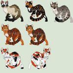 Custom Cats by Sukida-Adopts