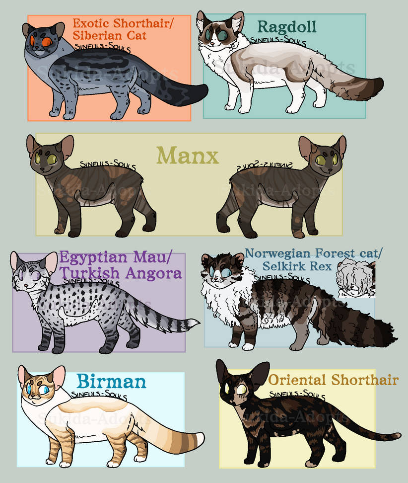 Closed   Feline Adopters #2 by Sukida-Adopts
