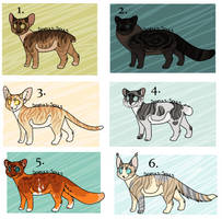 Closed - Cat adoptables by Sukida-Adopts