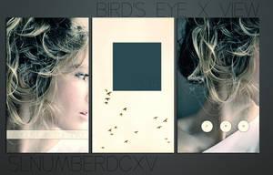 Bird's Eye x View by SLNumberDCXV