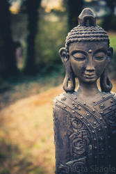 It's a Buddha-ful Morning by Daughter-of-Hecate