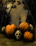 Pumpkin patch by JPMNeg