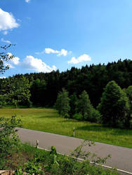 Bavarian forest  by TheSchnitter