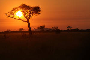 Africa Sunset by Abyssus-Angelus