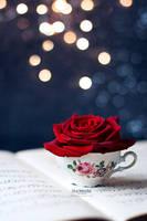 Romance by Marloeshi