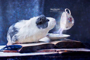 The magic teacup by Marloeshi