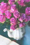 Pink roses by Marloeshi