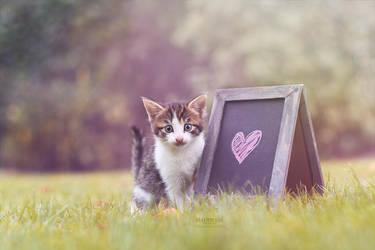 Love in the backyard by Marloeshi