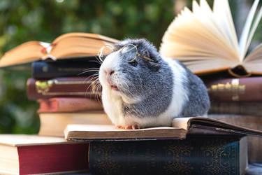 Bookworm Mieps by Marloeshi
