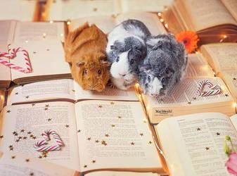 pigs 'n books by Marloeshi