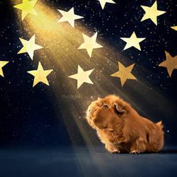 Starry night by Marloeshi