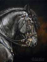 Frisian by AtelierArends