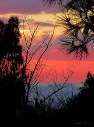 Winter Sunset by MyrtoGkiouli