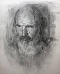 Old man / Portrait Practice by AnaviTil