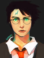 Harry Potter by gumwei