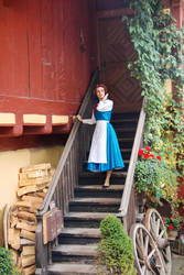 Belle- This Provincial Life by Para0Doll