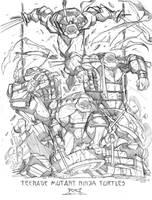 Commish Sketch 43 TMNT by RobDuenas