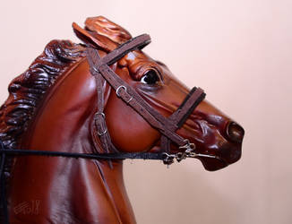 Soft chocolate bridle by Afuze